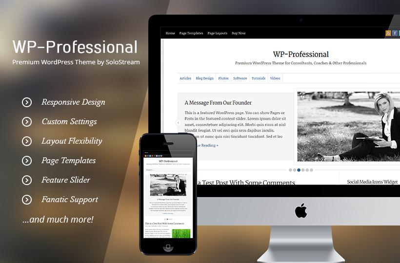 wp-professional1